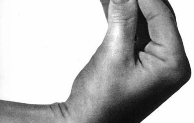 Speak Italian: The Fine Art Of The Gesture : A Supplement to the Italian Dictionary — Bruno Munari