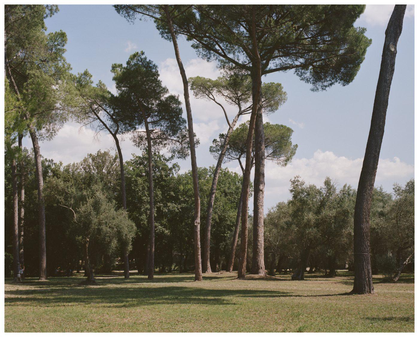Roman Photographer Fabrizio Amoroso Tivoli, Villa Adriana, 2019
