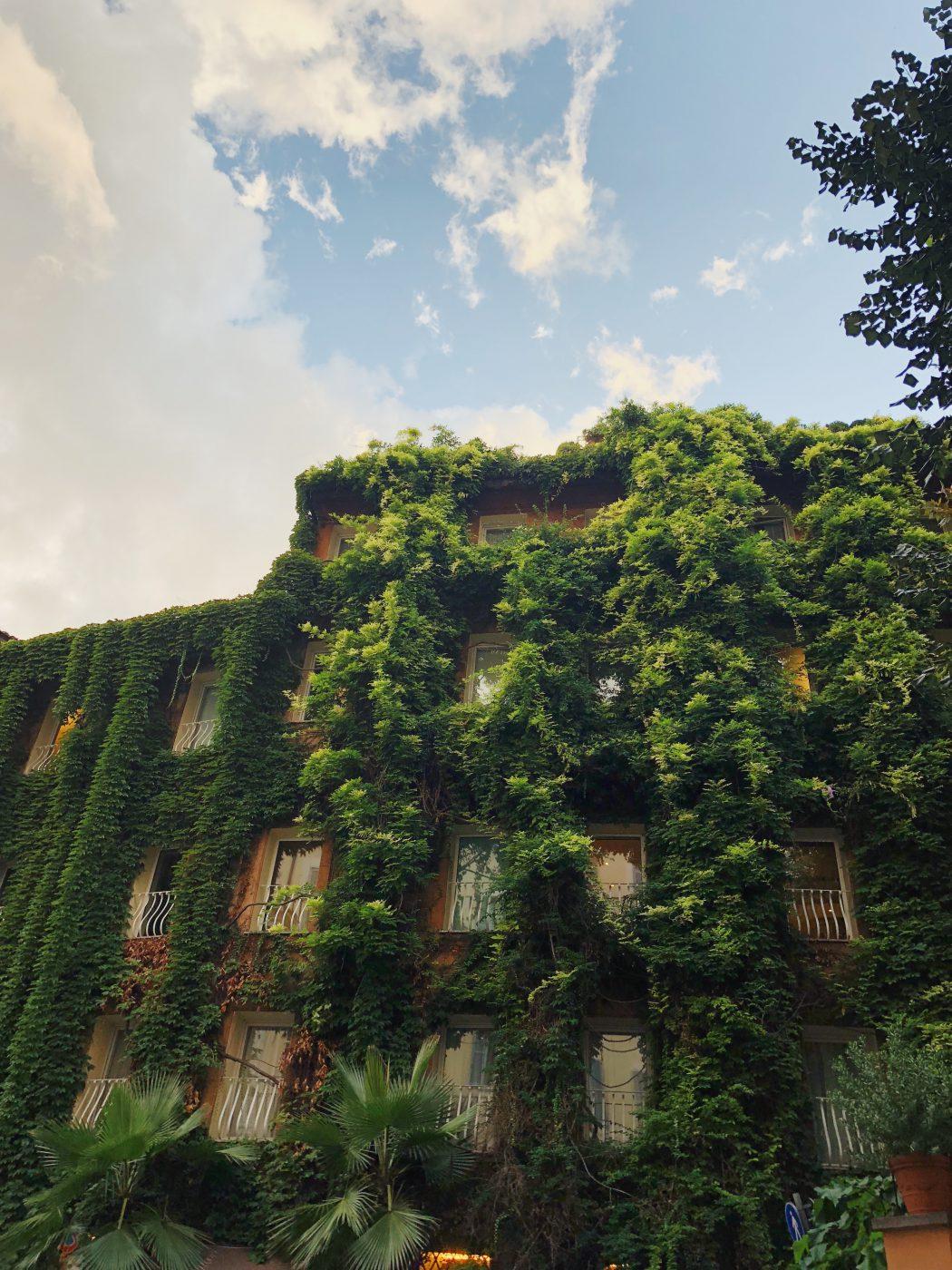 Hotel Raphael's terrace - Rome