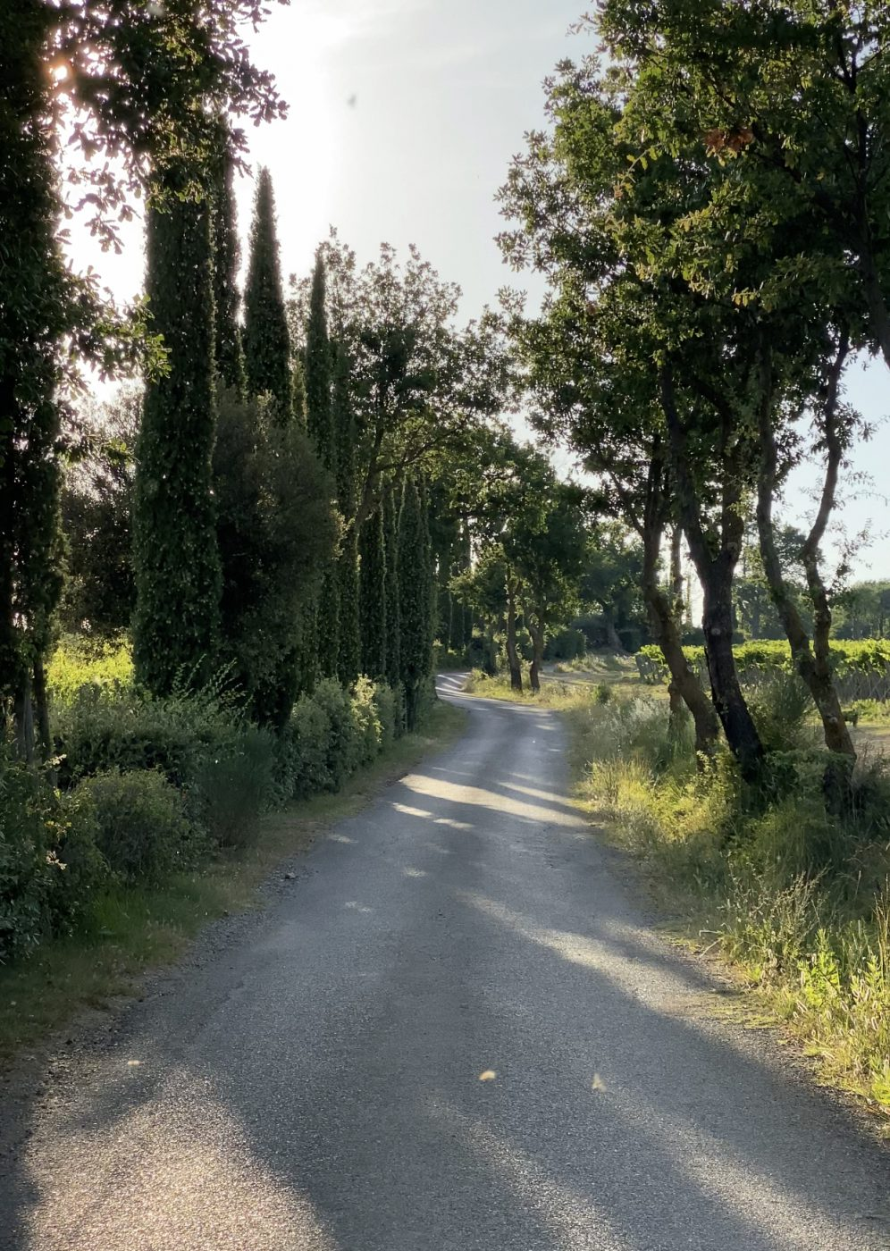 Tuscany during springtime
