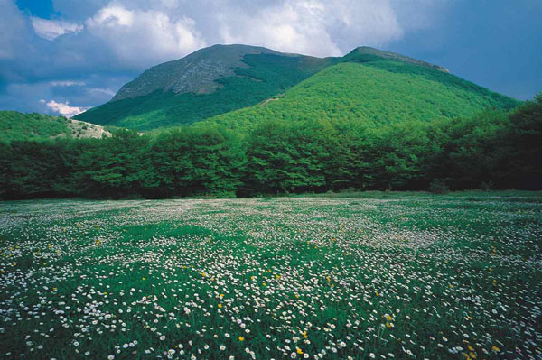 Umbria the Green Heart of Italy