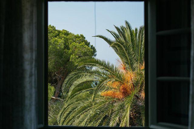palme in maremma villa talamo