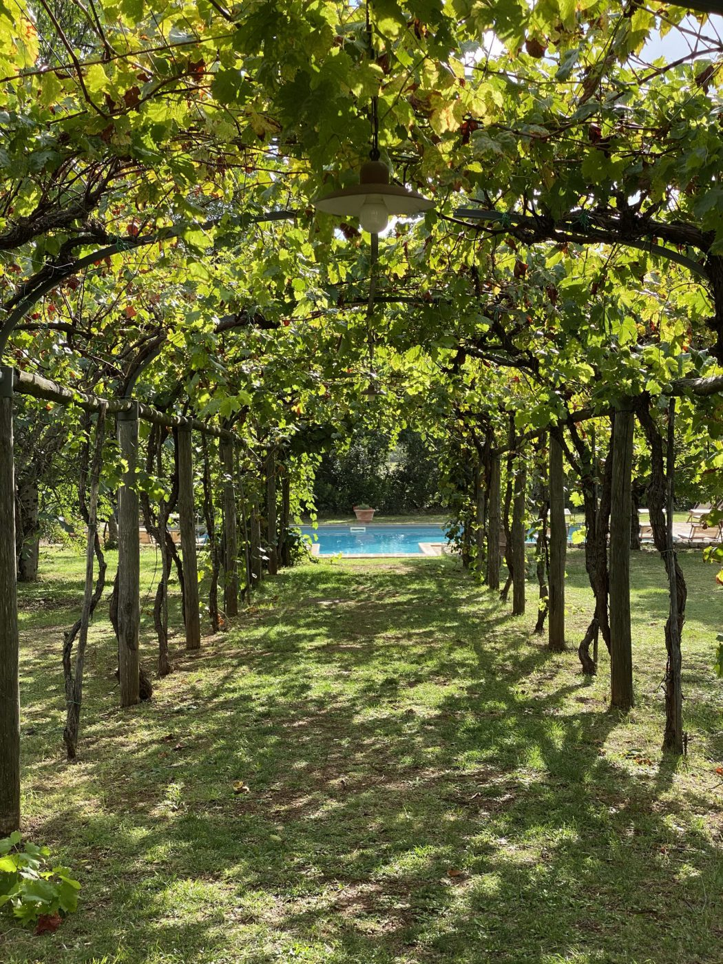 Countryside Lifestyle - Borgo della Marmotta Umbria